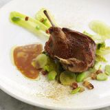 Squab at The Modern, NYC
