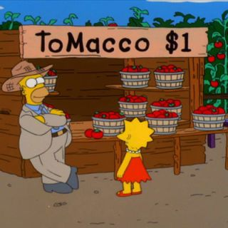 "<b>First Taste</b>: <i>The Simpsons</i><br /> <p>Homer inadvertently creates tomacco — a tomato-tobacco hybrid — when he fertilizes his fields with plutonium. The resulting fruit, which tastes terrible, proves to be powerfully addictive. Laramie Cigarettes try to buy tomacco rights from Homer with the intent to market it to children. Luckily, Homer holds out for more money, which allows time for the tomacco-crazed farm animals to eat the entire crop, save one plant, which is destroyed in a helicopter crash. Doh!</p>  <p><b>Recipes: </b>You don't need nicotine to become addicted to the taste of fresh tomatoes. Eat them out of hand, on a sandwich, or on one of these <a href=""/entertaining-ideas/parties/picnics/tomato-salad-recipes""><b>14 tomato salad recipes</b></a>.</p>"