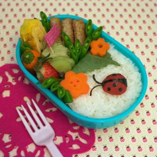 That cute ladybug crawling through a rice and veggie garden is actually a Japanese pickled plum decorated with toasted nori.