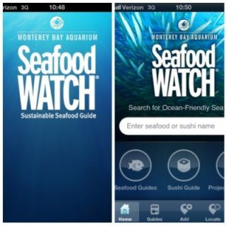 "<p>It's an unfortunate fact that not all fishing is eco-friendly. If you care about the ocean, but don't want to give up your otoro, turn to the Monterey Bay Aquarium's app, which helps you find more sustainable options for seafood and sushi. Their social function, Project FishMap lets you and others ad to a collective map of locations where sustainable seafood has been spotted. <a href=""http://www.montereybayaquarium.org/cr/seafoodwatch/web/sfw_iphone.aspx"" target=""_blank""><i>montereybayaquarium.org</i></a></p> <p><strong>Price: Free</strong></p>"