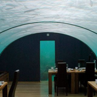 "Ithaa restaurant in the Maldives is located 5 meters (about 16.5 feet) below the surface and has 180-degree views of the vibrant coral gardens. The cuisine has a European slant, and is constructed into a six-course tasting menu paired with champagnes. The menu offers items like Malossol Imperial caviar with sour cream and potato blinis, and yellowtail king fish with saffron champagne risotto and beurre blanc foam. The all-inclusive six-course option will cost around $320 per person (plus a 10 percent service charge and 8 percent tax per person), but the <a href=""http://conradhotels3.hilton.com/en/hotels/maldives/conrad-maldives-rangali-island-MLEHICI/amenities/restaurants_ithaa_undersea_restaurant.html"" target=""_blank"">restaurant</a> does offer a slightly less expensive four-course lunch tasting menu that costs $125 per person."