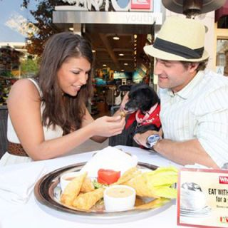 "<p>Looks like ""Bachelorette"" Deanna Pappas and fiancé Jesse Csincsak are practicing their parental skills. During National Dog Week the two cozied up at <a href=""http://www.thefarmofbeverlyhills.com/""target=""_new"">The Farm of Beverly Hills</a> with Freedom, a shelter dog, for Eat With Your Paws for a Good Cause. Paw-lickin' good!"