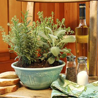 For a year-round centerpiece that pulls its weight in the kitchen, plant a large bowl with assorted herbs. Pick plants that have the same sun and water requirements, since they'll be roommates, so to speak. Pinch off a few leaves as you're cooking for a fresh-tasting boost of flavor to your dish. Great herbs to try include basil, thyme, rosemary, and parsley.