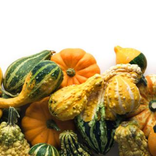 Consider a pumpkin or a faux gourd, such as Funkins, instead of a vase on your Thanksgiving table.