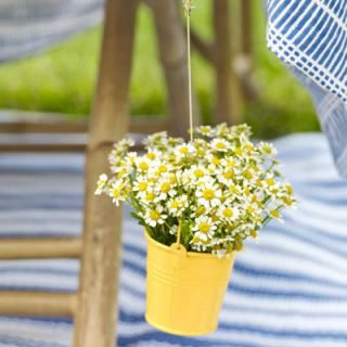 "Skip store-bought weights and make your own by filling tiny buckets with wildflowers and a half inch of water. Just suspend the bouquets from your tablecloth using a clip and fishing line or skinny ribbon. Tie and knot one end around the handle of the bucket and the other around the clip. <br /><br /><i>(Three-inch pails, $8.99 for 12, and similar fastener, $8.51 for 36 bulldog clips; <a href=""http://www.orientaltrading.com""target=""_new"">orientaltrading.com</a>) </i>"