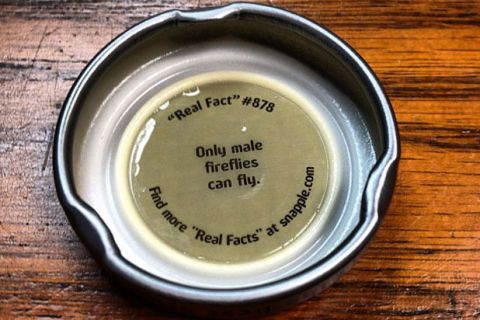 Untrue Snapple Facts Snapple Caps