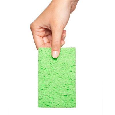 Kitchen Sponge Germs - Cleaning Kitchen Sponges