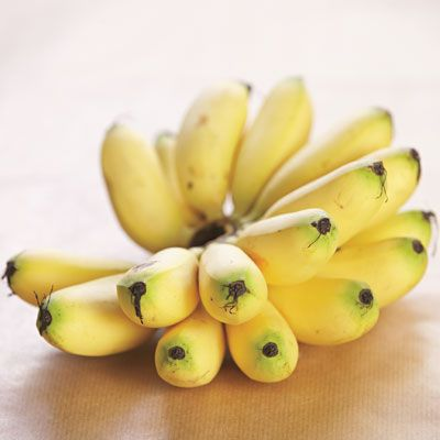<p>These are small, golden-skinned bananas from Asia. The flesh is sweet and creamy. These bananas are usually sold in bunches in Asian food shops. Do not store in the refrigerator as the skin will turn black.</p>