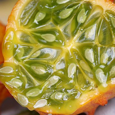 The African cucumber or horned melon as it is also known is perhaps one of the most beautiful fruits. It is bright orange on the outside with a green and yellow interior, which forms a geometric design with its seeds. Strangely its flavor has been compared to cucumbers and zucchinis, which the fruit resembles, but also bananas and lemons. While native to Africa, horned melons are now grown in California, Chile, Australia, and New Zealand.