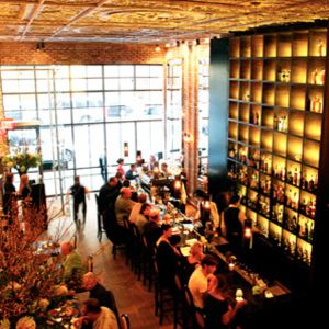 <p><strong>Betony, New York</strong></p>