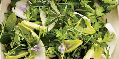 """<p>Herb salads can be intense, but crisp endive leaves keep this recipe light and subtle.</p> <p><b>Recipe: <a href=""""http://www.delish.com/recipefinder/herb-endive-salad-creamy-lime-dressing-recipe"""" target=""""_blank"""">Herb-and-Endive Salad with Creamy Lime Dressing</a></b></p>"""