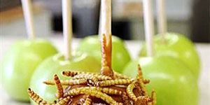 <p><b>Phoenix, Oct. 14-Nov. 6, 2011</b></p><br />  <p>Along with deep-fried crickets, the Arizona Exposition & State Fair's Chef du' Jour booth sells caramel apples dipped in mealworms.</p>