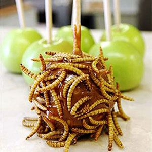 <p><b>Phoenix, Oct. 14-Nov. 6, 2011</b></p><br />