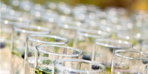 <p>Make sure you've got a few nonalcoholic options (especially if it's an outdoor summer wedding). For hotter months, try water infused with cucumber, melon, mint, and loads of crushed ice. During the winter, serve hot apple cider with cinnamon sticks.</p><br /> <p><b>Top-Shelf Idea</b></p>: Give guests more than just water and soda by having at least one mocktail on the menu. Work with your caterer or mixologist to come up with something inventive — like a mix of grapefruit and orange juices, a little coconut milk, and a small scoop of orange sherbet on top.