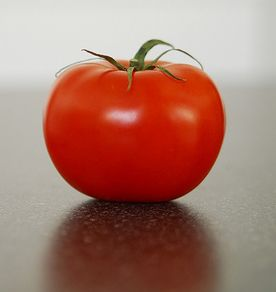 is a tomato a fruit or vegetable nix v hedden tomato fruit or