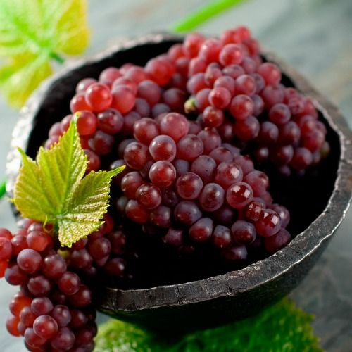 World's Most Expensive Grapes - Japanese Ruby Roman Grapes