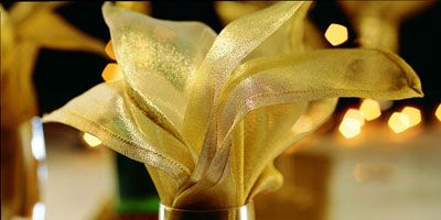 <p>A thin fabric (and definitely no starch) showcases this fold to its best advantage.</p><br /> <p>It works equally well in water or wineglasses.</p><br />