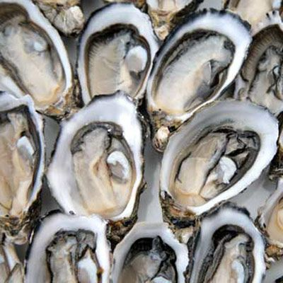 """<p>Chef Waldy Malouf's <strong><a href=""""http://www.thedailygreen.com/healthy-eating/recipes/Roasted-Oysters-Shallots?src=syn&mag=tdg&dom=delish&link=emb"""" target=""""_blank"""">Roasted Oysters with Shallots and Herbs</a></strong></p>   <br /> <p>Roasting oysters on the half shell is a little different than cooking other things at high heat. The purpose isn't so much to char and brown them as it is to heat them through, just enough for them to release all their flavorful juices and firm up slightly. These oysters are topped with little spoonfuls of a shallot-white wine-butter sauce, which mixes with the oyster juices and reduces in the oven, while the shallots get crisp. Six oysters make an impressive appetizer, or you can pass the oysters still in their baking dish (wear oven mitts) as an hors d'oeuvres....</p>"""