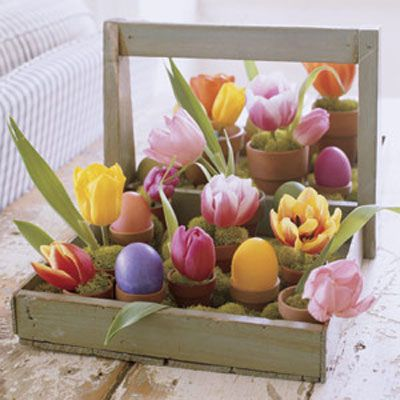 Brimming with vibrant tulips and intensely hued eggs, a rustic berry tray becomes a cheery centerpiece to brighten any tabletop. Look for flat-bottom antique wooden carriers (called trugs) at flea markets, or artificially age a new one from a garden store using sandpaper. Place tiny terra-cotta pots inside the base in free-form rows, filling the spaces in between with mounds of decorative moss. In about half the containers, perch dyed hard-boiled eggs; in the other half, insert dampened floral Oasis (available at crafts stores), tulip blossoms, and more moss.