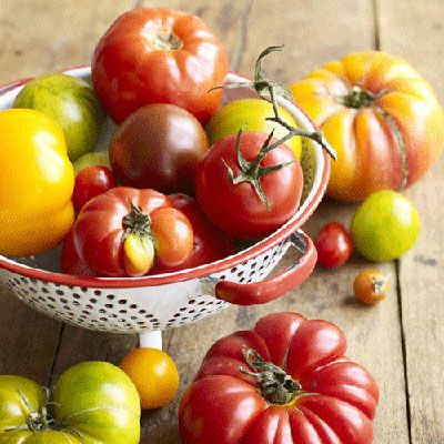 "Tomatoes are plump, juicy, and bursting with healthy antioxidants. Learn what to look for when choosing a tomato.<br /><br /> <a href=""/vine-ripened-tomatoes-0309""target=""_new"">All About Vine-Ripened Tomatoes</a>"