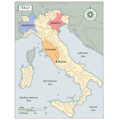 Italy has produced wine for more than 3,000 years. Italian wines are good for any occasion — from quaffing to serious tasting. There are more than 2,000 wine labels, 20 regions, and 96 provinces. But if you want to know the basics of Italian wines, concentrate on three regions: Tuscany, Piedmont, and Veneto. The major grapes in these areas are Sangiovese, Nebbiolo, and Corvina, respectively.<br /><br />