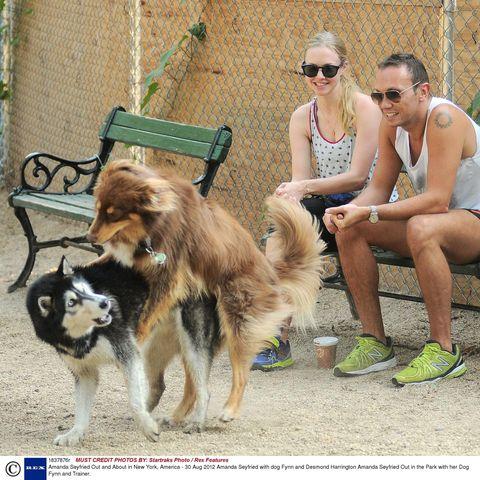 Dog breed, Human, Shoe, Vertebrate, Dog, Sunglasses, Carnivore, Hat, Goggles, Outdoor furniture,