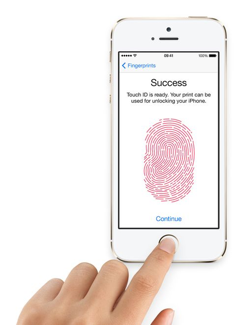 Touch ID 'won't work with severed finger'