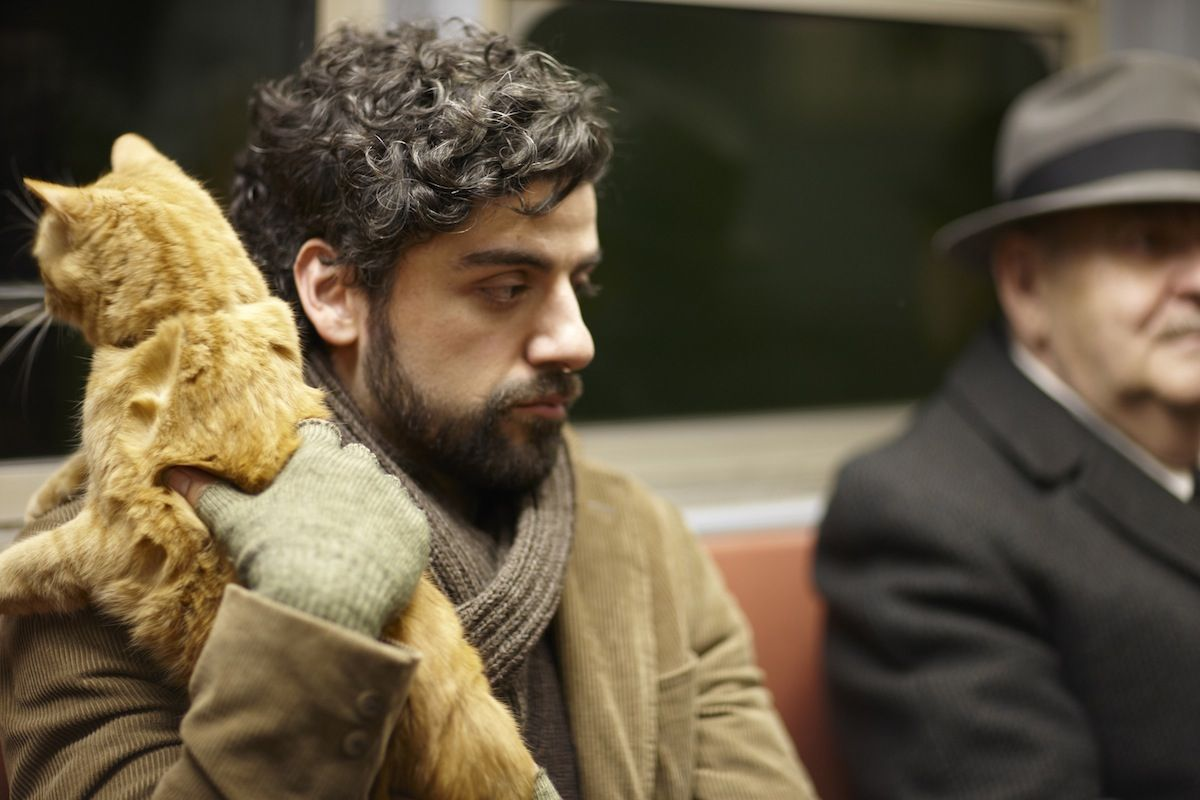 Image result for llewyn davis cat