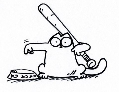 Simon's Cat film campaign raises £88,000