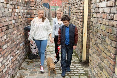Brick, Human, Brickwork, Trousers, Jeans, Wall, Denim, Mammal, Carnivore, Dog breed,