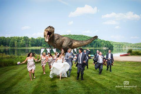 3ccca9196bd81 Jeff Goldblum in epic dinosaur wedding photo