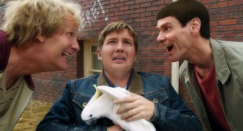 Dumb and Dumber To review