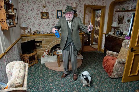 Room, Interior design, Living room, Interior design, Floor, Flooring, Picture frame, Home, Dog breed, Cabinetry,