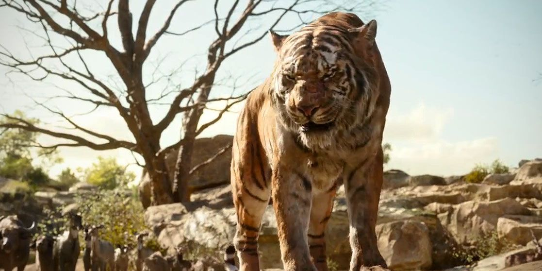 Shere Khan the tiger