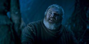 Kristian Nairn as Hodor