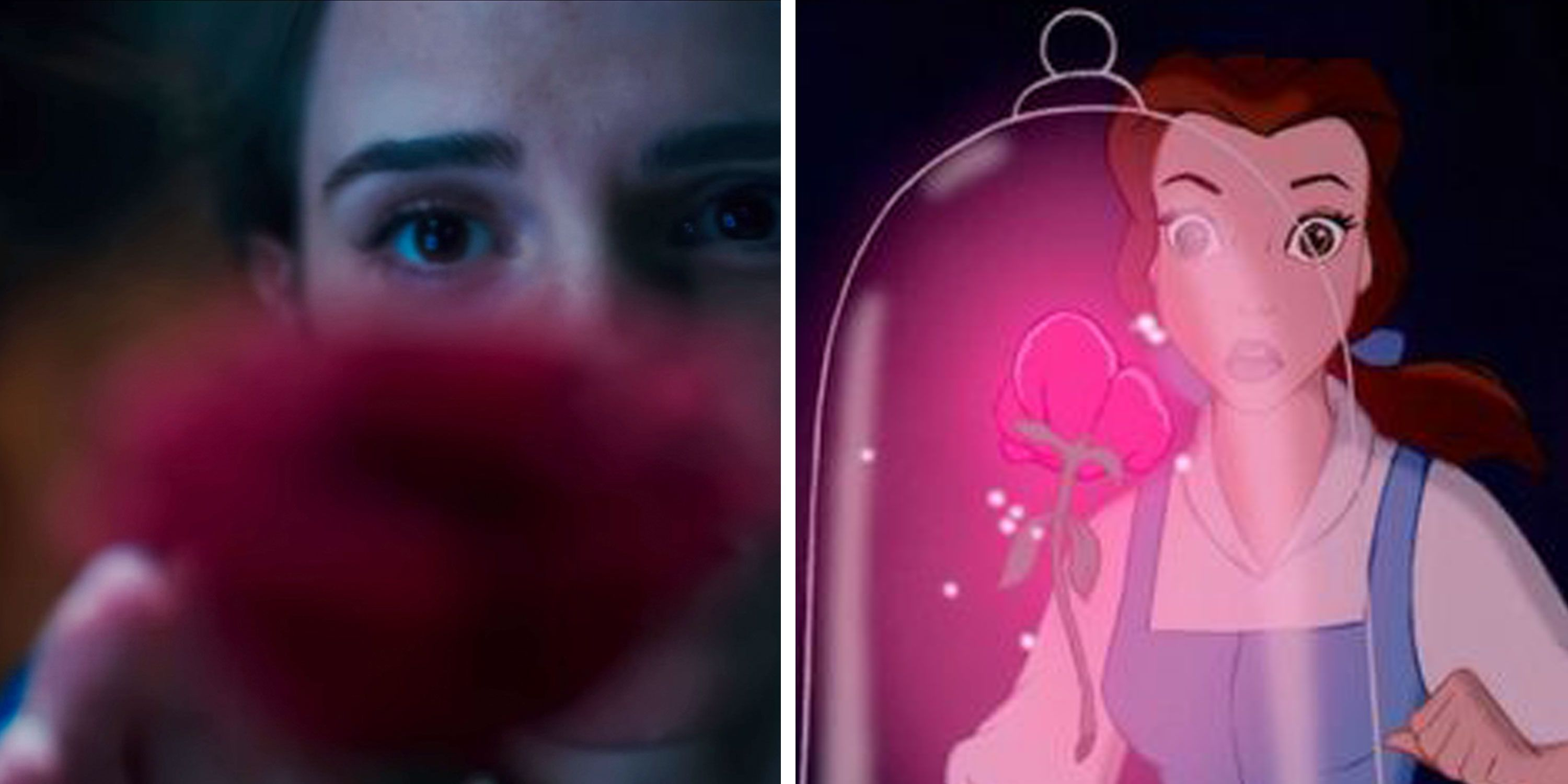Emma Watson as Belle and Disney's Belle find the rose