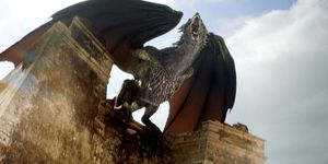 Drogon dragon in Game of Thrones