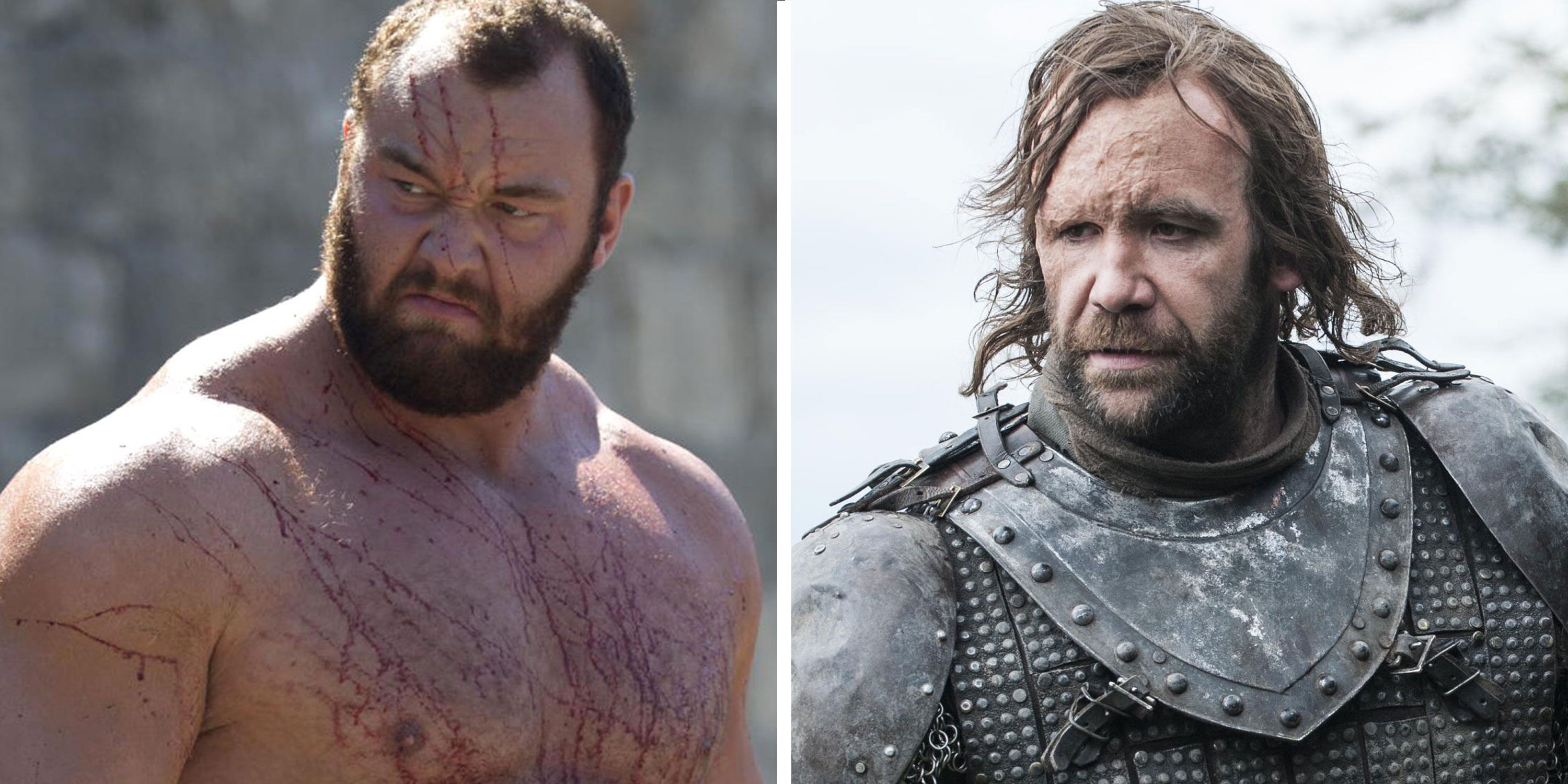 The Mountain and The Hound