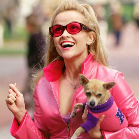 reese witherspoon, elle woods, legally blonde
