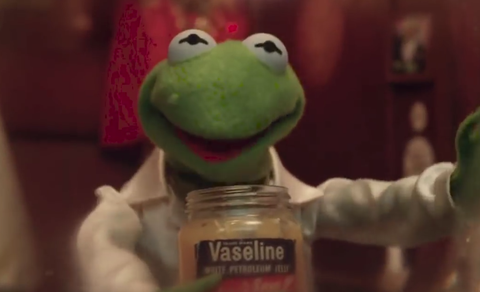 Kermit the Frog's puppeteer and voice actor Steve Whitmire