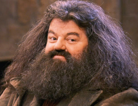The big guy on harry potter