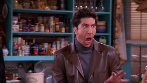 David Schwimmer as Ross on Friends