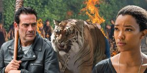 Negan, Shiva the Tiger, Sasha, The Walking Dead