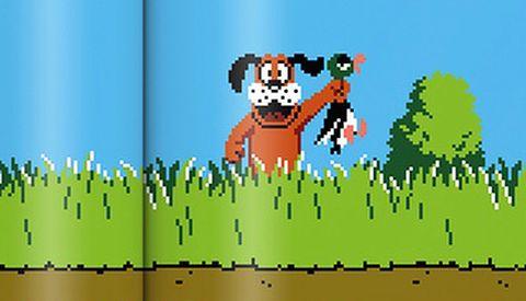 Duck Hunt on Nintendo NES