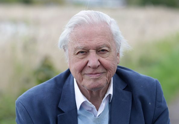 David Attenborough returns to BBC with brand new nature project