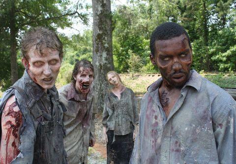 Walking Dead zombie - season 2
