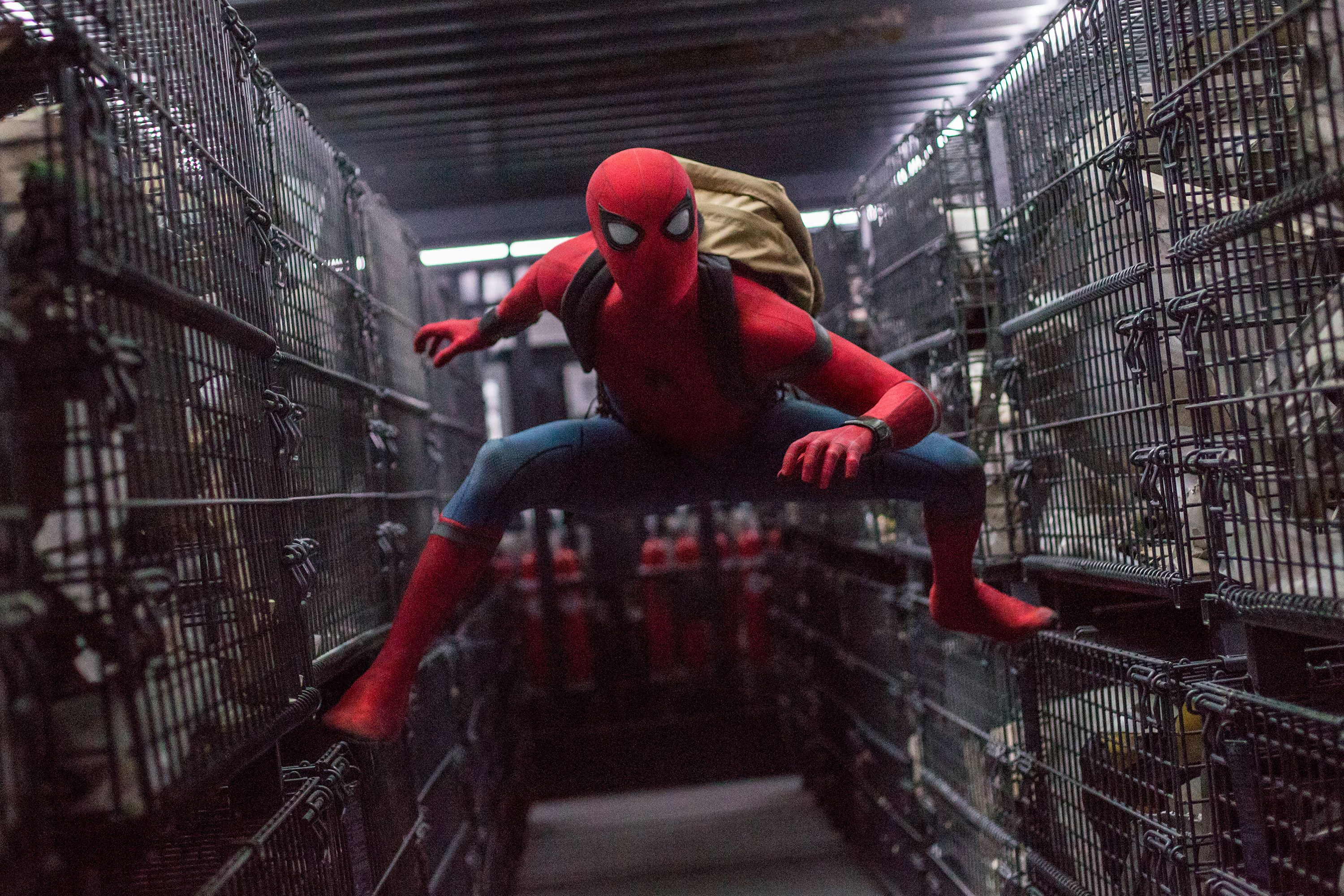 Spider-Man: Far From Home Writers Explained What Happened When Everyone Was Snapped Back to Life