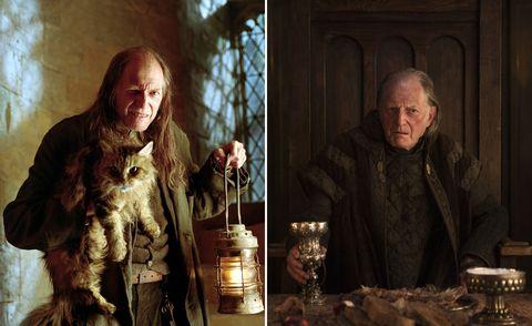 David Bradley, Harry Potter, Game of Thrones