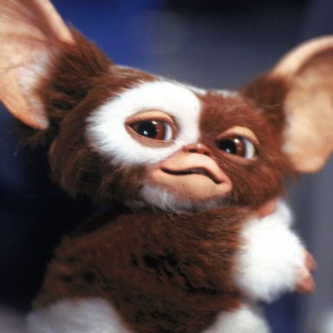Gremlins Is Being Rebooted But Not As A Movie