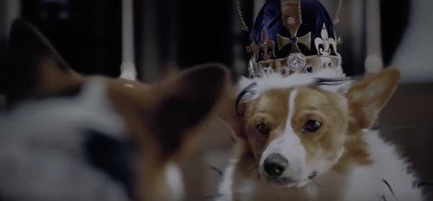Netflix's The Crown with corgis